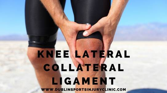 Knee Lateral Collateral Ligament